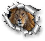 A4 Size Ripped Torn Metal Design With Lion Motif External Vinyl Car Sticker 300x210mm